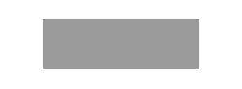 logo-visa-gris-2